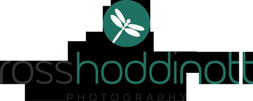 Photographer Ross Hoddinott's profile & background